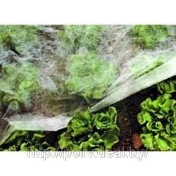 Укрывной материал Спанбонд для защиты растений и посевов СУФ 17 (белый)